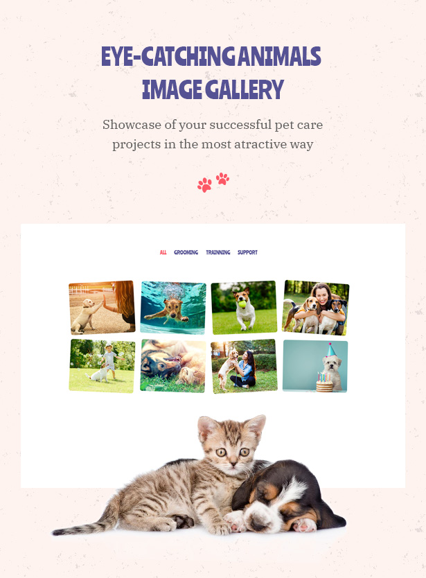 Petie - Pet Care Center & Veterinary WordPress Theme Eye Catching Animals Image Galleru