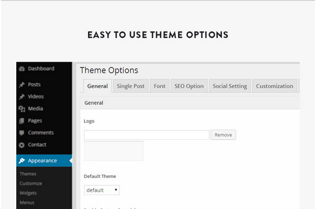 easy_to_use_theme_option