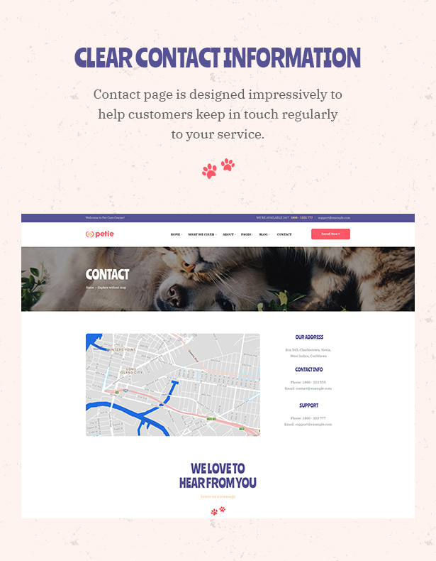 Petie - Pet Care Center & Veterinary WordPress Theme Contact Us Page