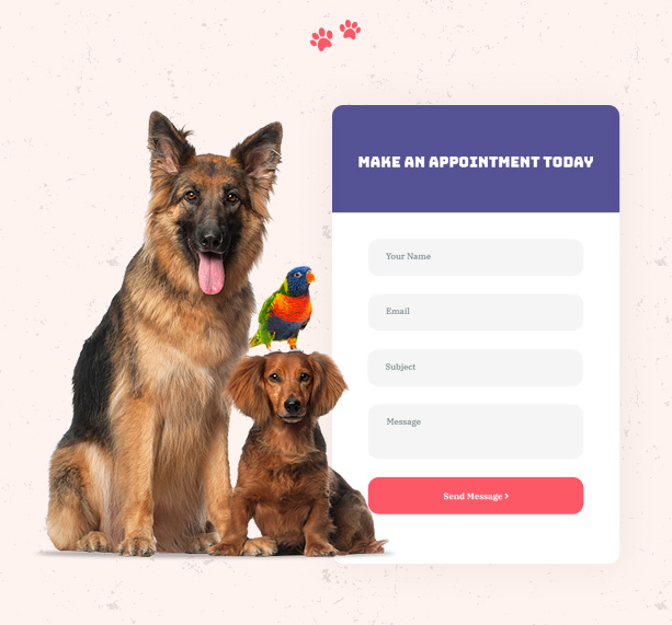 Fast Online Service Booking in Petie pet care center WordPress theme