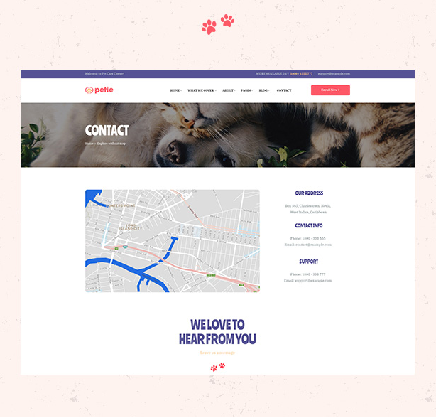 Clear Contact Page in Petie Best Pet Care Center WordPress theme