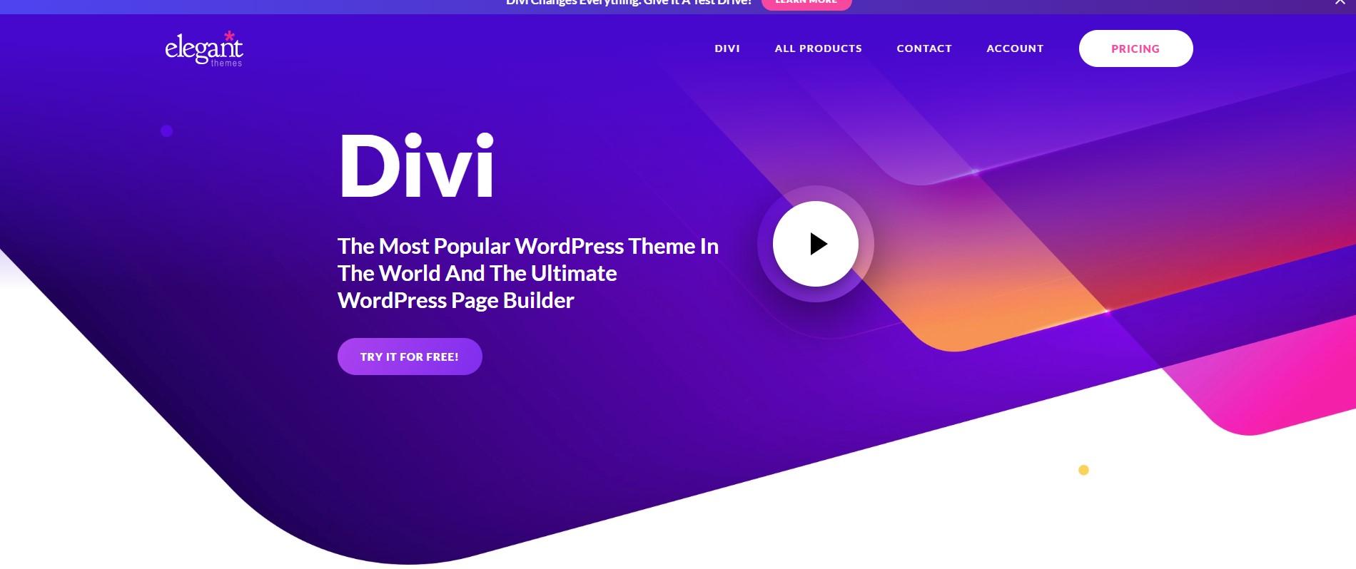 Divi Minimalist WordPress Theme