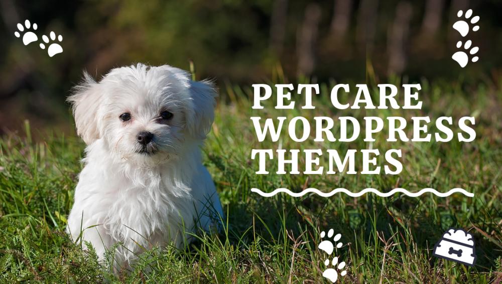 pet care wordpress themes-wpopal