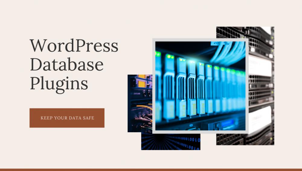 WordPress Database Plugin - Wpopal