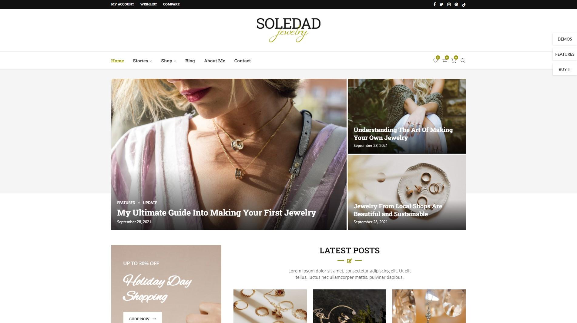 soledad best wordpress themes for writers